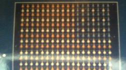 """234 LIGHT """" AMERICAN FLAG """" 4 feet x 6 feet / 4 hooks for ha"""