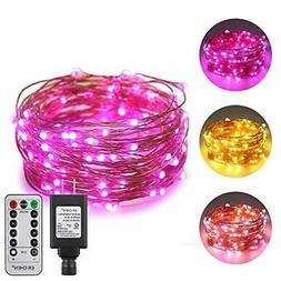 ErChen Dual-Color LED String Lights, 33 FT