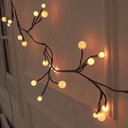 YINGXIANG Globe String Light 8.2Ft LED Decorative String Lig