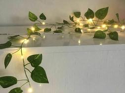ivy string lights 20ft indoor use