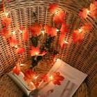 1.5m Leaves Light String 10LED Christmas Party Holiday Outdo