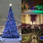 10/20/50/100m LED Christmas Tree String Fairy Lights Outdoor