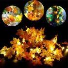 10 LED 165cm Lighted Leaf Harvest Fall Leaves Garland Lights