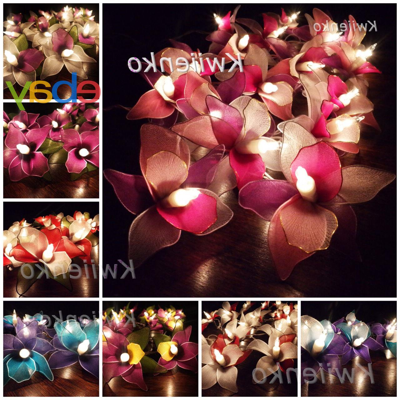 20 LED Battery or Plug in Orchid Flower Fairy String Lights