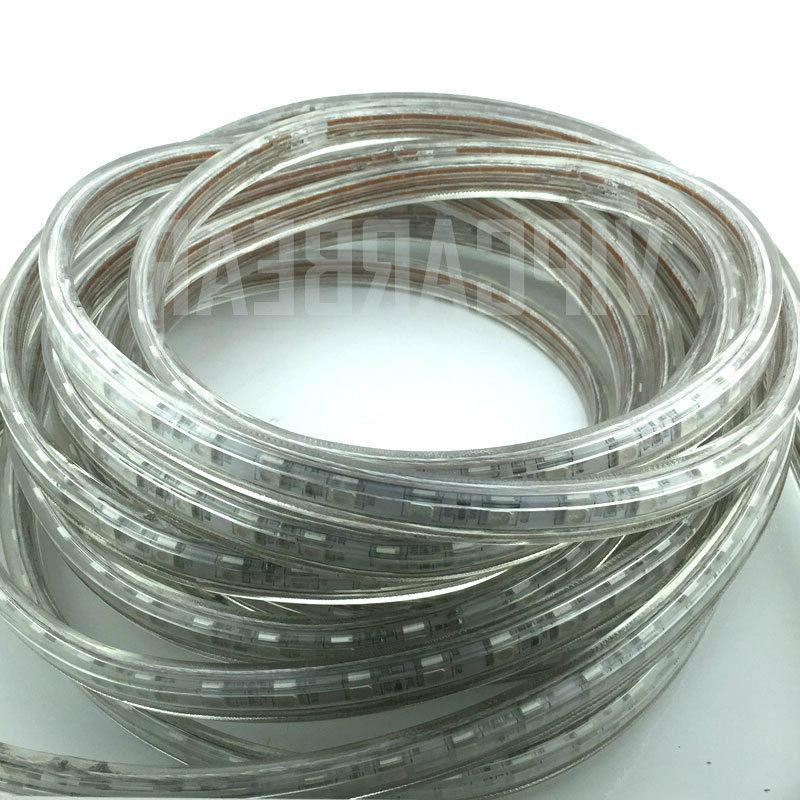 3ft-100ft Strip Rope Light IP68+
