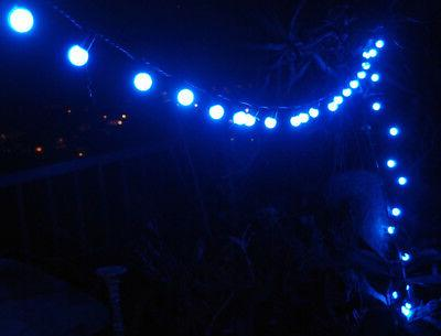 50 Indoor/Dry Outdoor Blue LED Globe Ball String Lights, 17F