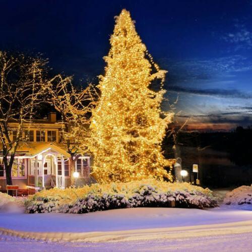 Fairy Lights LED Christmas Xmas USA