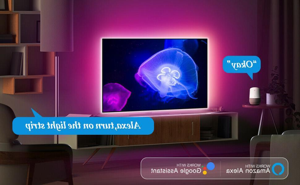 65FT 3528 LED SMD Remote TV