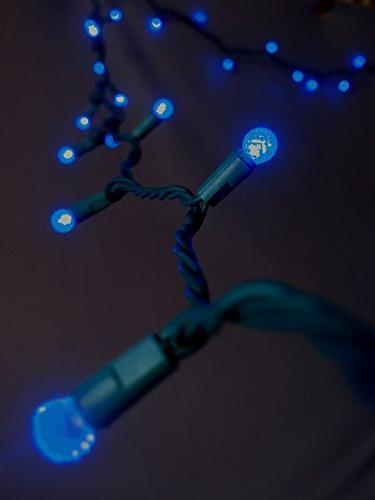 70 blue g12 raspberry string