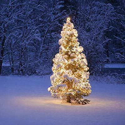 Prextex Christmas 100 White Wire Light Set Christmas