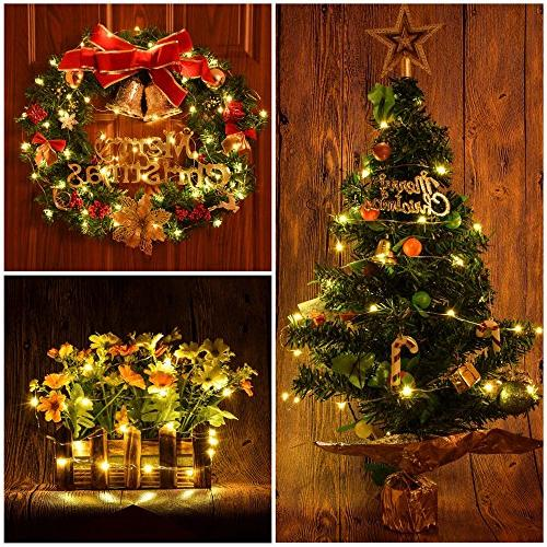ErChen Dual-Color Battery Operated 66 FT Color Changing Silvery Copper Wire Dimmable Fairy Light with Remote Indoor/Outdoor Christmas