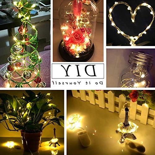 Ehome 12 Lights Battery 20LED Christmas Lights Copper Wire Lights for Party Warm White