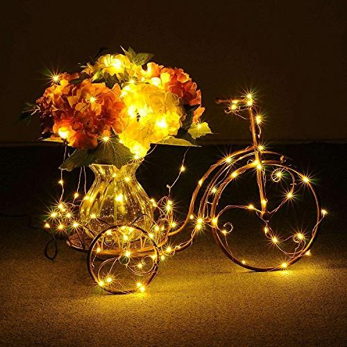 LED Lights, Micro 35 Wire Plug in,Perfect Christmas Mason DIY