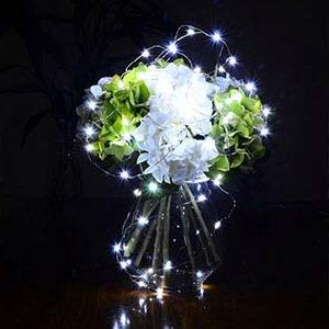 XINKAITE 30 LEDs on 9.8Feet/3M Lights, Silver Fairy Battery Operated String Party Table Decorations, Cold