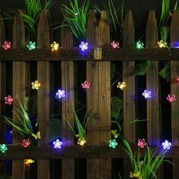All Star 50 LED Solar-Powered Flower Bulbs Outdoor String Li
