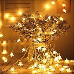 34ft Outdoor Star shape Lights LED Warm White Twinkle Lights