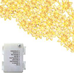 echosari LED String Lights 4M/13feet 40 LED Lotus Flower for