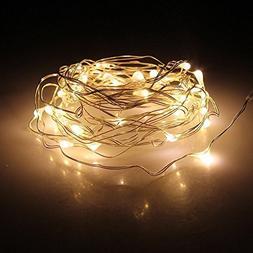 LED Fairy String Lights,ANJAYLIA 10Ft/3M 30leds Firefly Stri